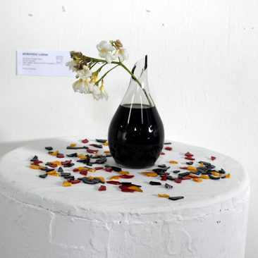 Winifrid Luena We Grow Through What We Go Through Plant Bottle Glass and Paint Installation 28cm x 45cm